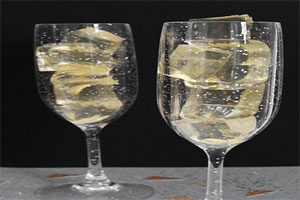 دسر ژله شامپاین
